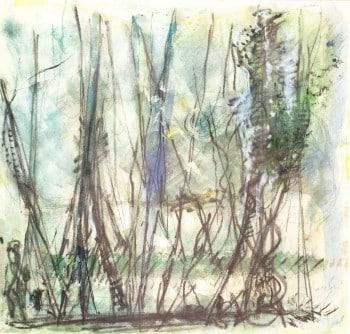 """יחזקאל שטרייכמן, """"עצים על גדות הירקון"""", פחם ואקוורל על נייר, 40x40 ס""""מ"""