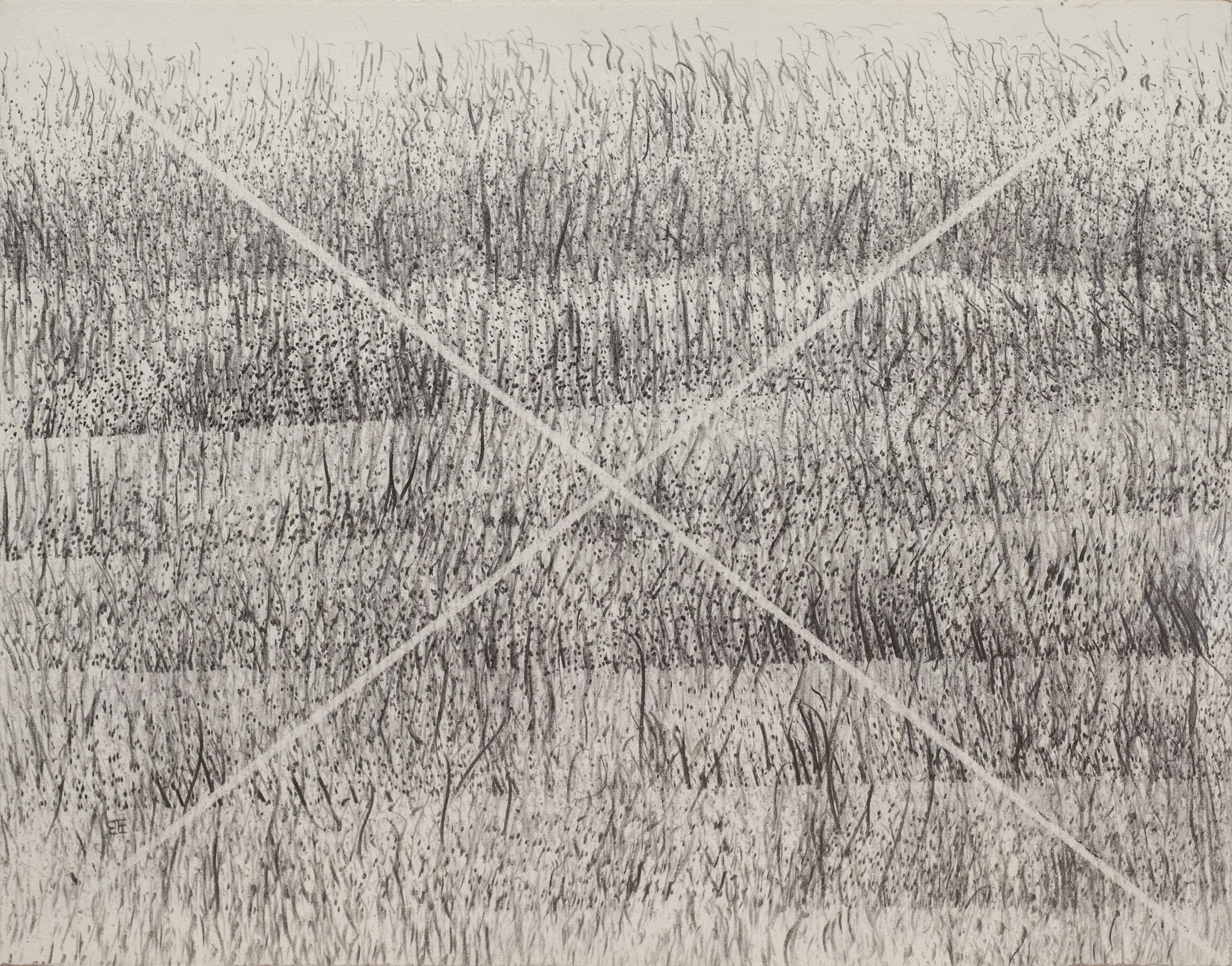 """בני אפרת, עיפרון על נייר, 37x29 ס""""מ"""